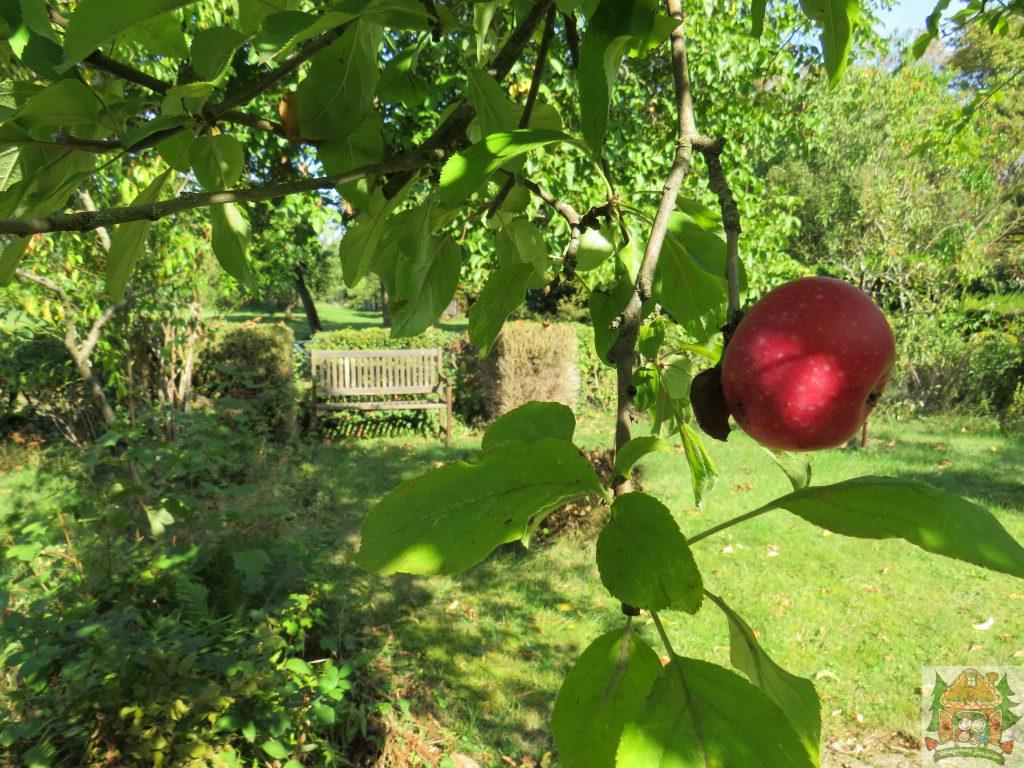 Seidenweberei Blick in den Garten